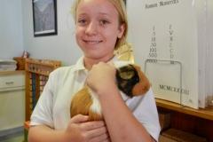 Nibbles - Classroom Pet