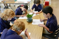 Writing Articles for the Montessori Times Newspaper