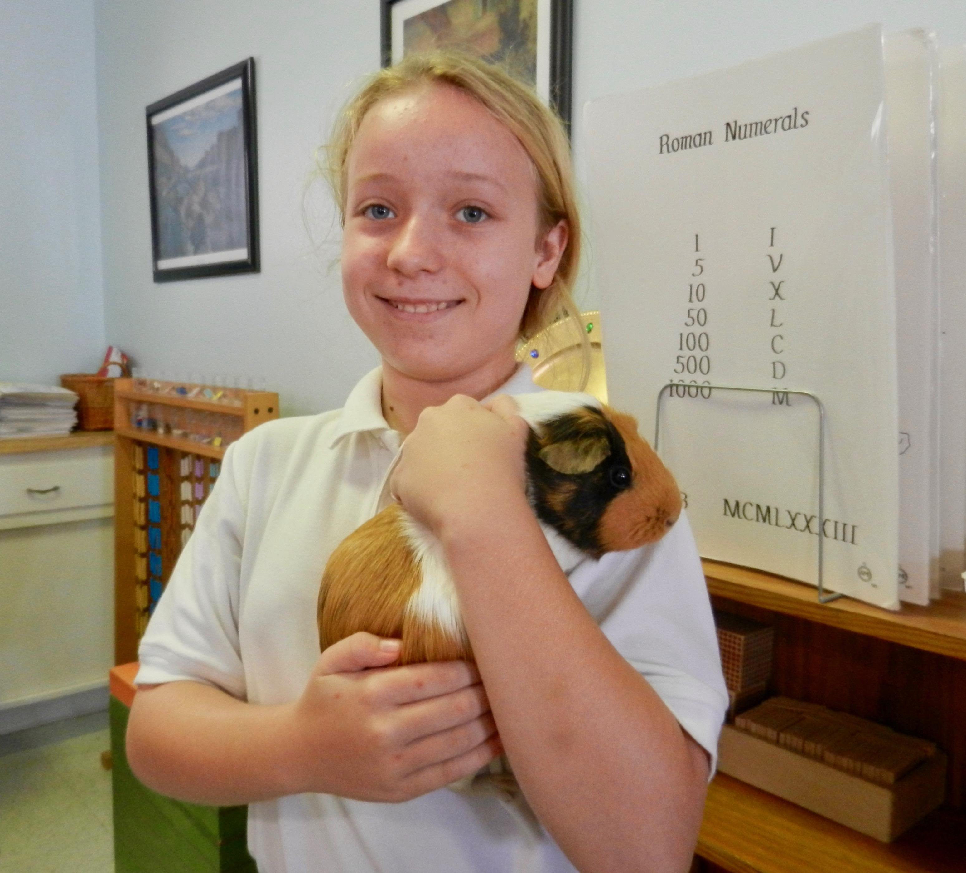 Classroom Pet - Nibbles
