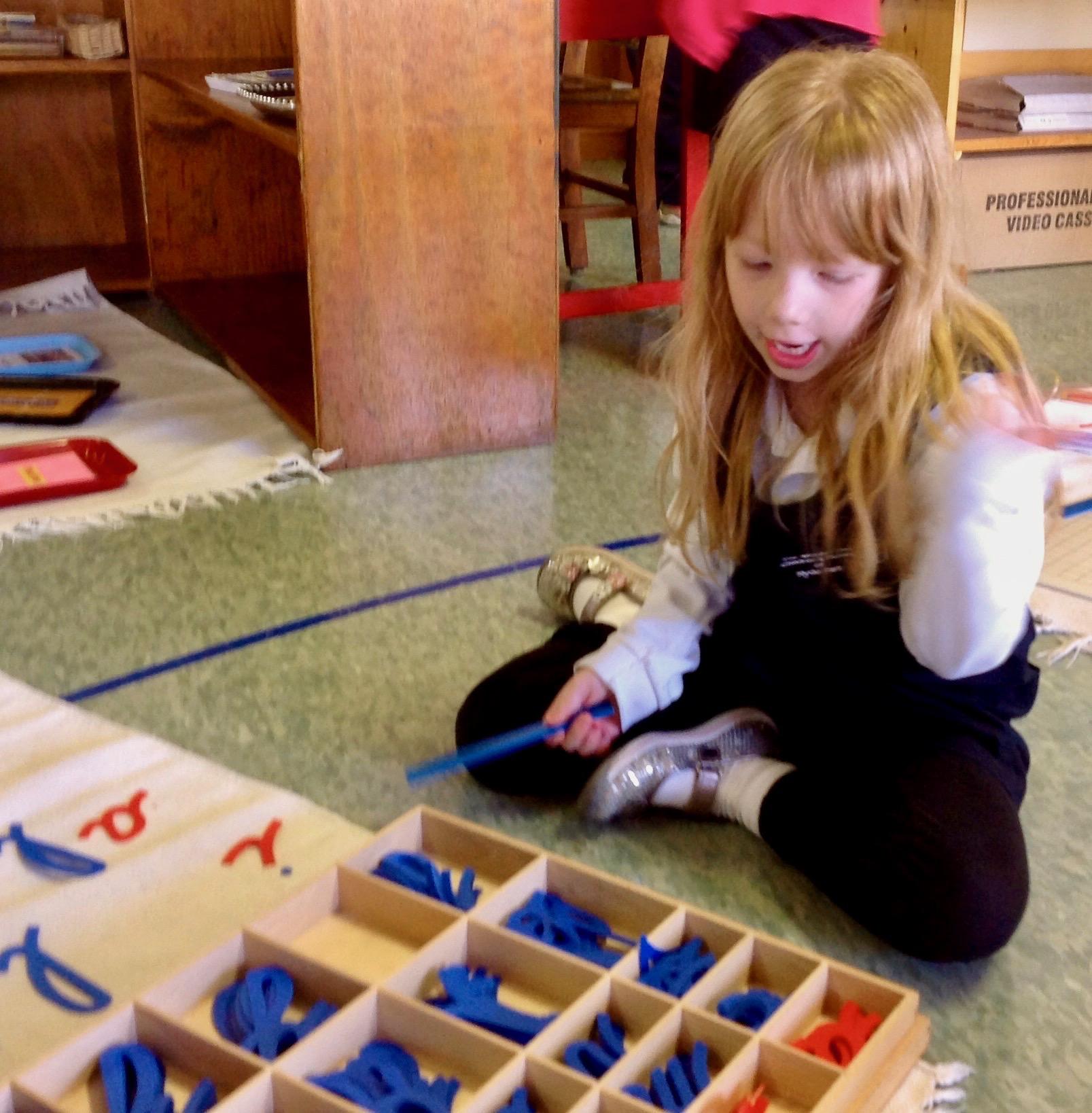 Montessori Materials - Moveable Alphabet